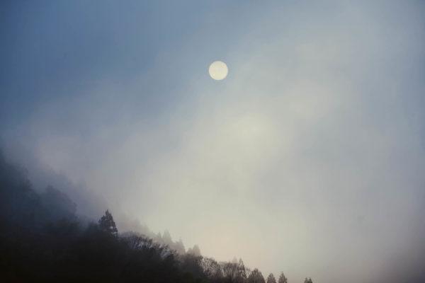 kawamoto_morning